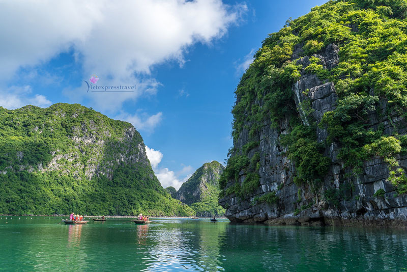 ONE DAY TOUR HALONG BAY ( 06 HOURS )