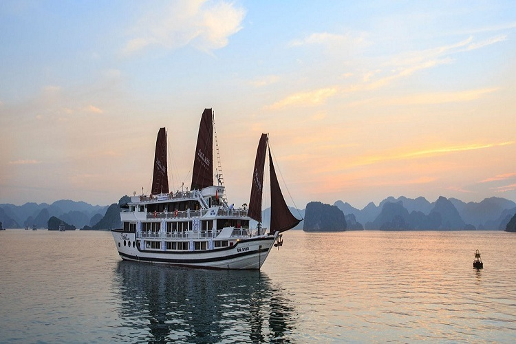 APRICOT PREMIUM CRUISE IN CAT ONG ISLAND ( 3 DAYS – 2 NIGHTS )
